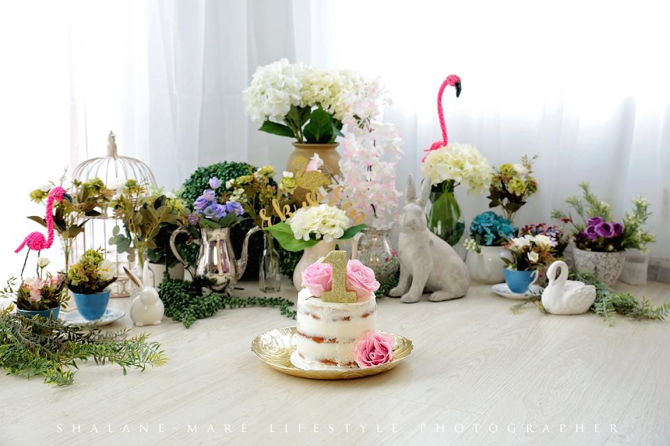 Onederland Cake-Smash Photo Shoot